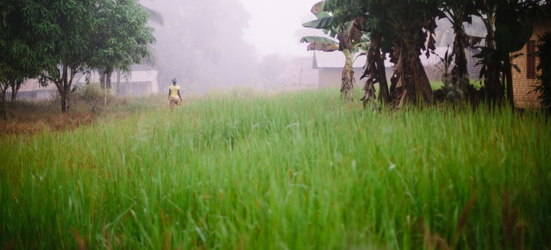 Human Trafficking: Exploited Hope